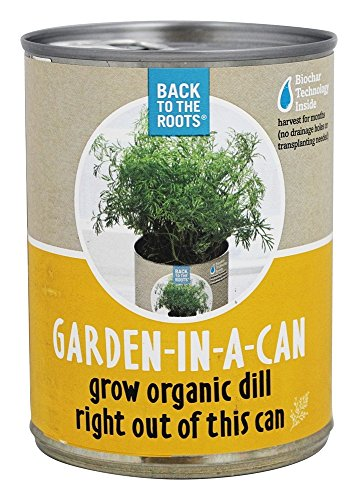 back-to-the-roots-garden-in-a-can-organic-dill