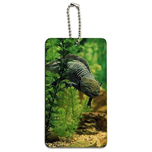 Axolotl-mexikanischen salamandar-Wasser Monster Holz ID-Tag Gepäck-Koffer