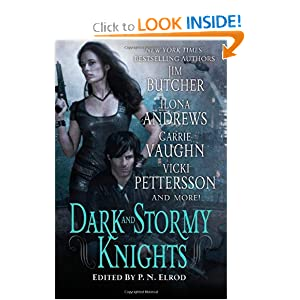 Dark and Stormy Knights - Various Authors