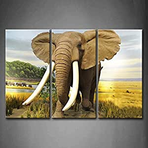 Fashion stylish 3 panel wall art african African elephant home decor