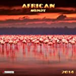 African Wildlife 2014 (What a Wonderf...