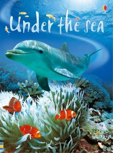 Under the Sea (Beginners)