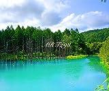 風景写真ポスター 北海道 美瑛 青い池 j 自分好みの額に入れたりボードに貼って部屋飾りをおしゃれに楽しめます サイズ 59.4×49.0㎝