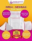 Intelli-Meshbag Wash Bag System (Set of 4): Top-Notch Double-Layered Lingerie Bag, Delicates Bag, Delicates Laundry Bag or Lingerie Bags for Laundry