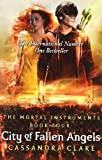 Cassandra Clare The Mortal Instruments 4: City of Fallen Angels by Clare, Cassandra on 01/09/2011 unknown edition