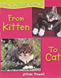 FROM KITTEN TO CAT (0750238623) by POWELL