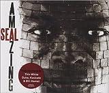 Seal Amazing [CD 1]