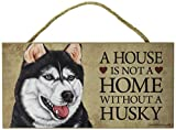 A house is not a home without Siberian Husky - 5