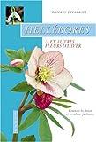 echange, troc Thierry Delabroye - Hellébores et autres fleurs d'hiver