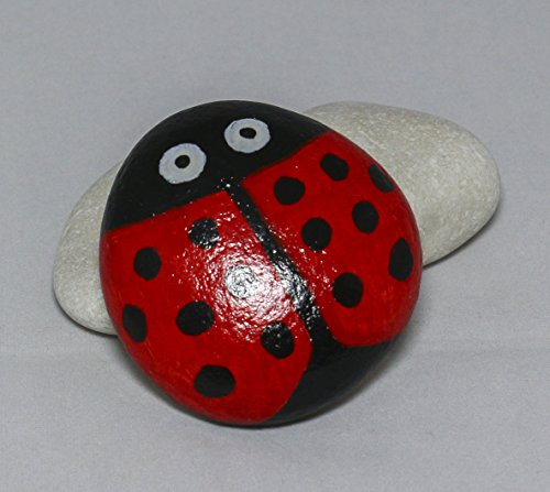 Lady Bug Design Hand-Painted Rock (Painted Rocks compare prices)