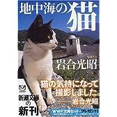 地中海の猫 (新潮文庫)