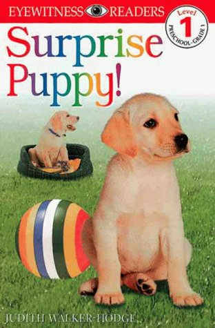 DK Readers: Surprise Puppy (Level 1: Beginning to Read), JUDITH HODGE