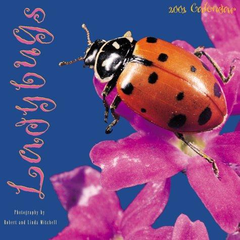 Ladybugs 2001 Calendar