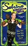 img - for NOW YOU SEE HER, NOW YOU DON'T: SABRINA, THE TEENAGE WITCH #16 book / textbook / text book