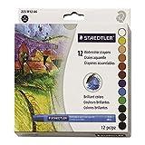 Staedtler Karat Aquarell Premium Watercolor Crayons, 223M12 (Color: Silver)