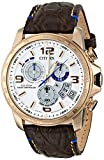 Citizen Mens BY0103-02A Chrono-Time A-T Limited Edition Analog Display Japanese Quartz Brown Watch
