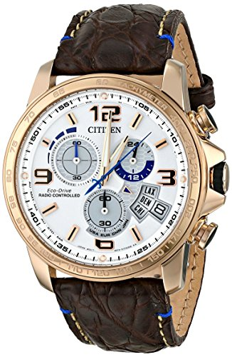 Citizen Men'S By0103-02A Chrono-Time A-T Limited Edition Analog Display Japanese Quartz Brown Watch