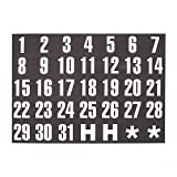 "Magnetic Board Magnets, Dates, 1""x2"", White on Black, 31/Set MAVFH37"