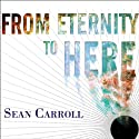 From Eternity to Here: The Quest for the Ultimate Theory of Time Audiobook by Sean Carroll Narrated by Erik Synnestvedt