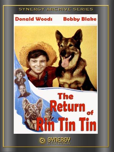 the-return-of-rin-tin-tin