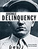 Juvenile Delinquency (Justice Series) Plus MyCrimeKit -- Access Card Package (The Justice Series) (0133010201) by Bartollas, Clemens