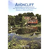 Avoncliff: The Secret History of an Industrial Hamlet in War and Peaceby N.J. McCamley