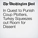 In Quest to Punish Coup Plotters, Turkey Squeezes out Room for Dissent | Erin Cunningham