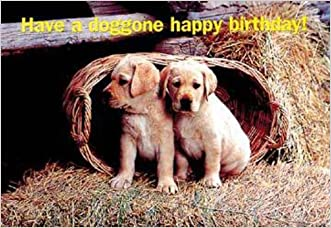 Happy Birthday Puppies Postcard (Package of 25)