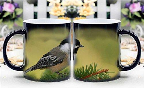 iRocket Magic Mug - Heat Sensitive Color Changing Coffee Cup - Black Cap Chickadee Magically Appear- Best Creative Gift Choice (Black Cap Chickadee compare prices)