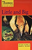 img - for Little and Big (Sundance Publishing: Little Red Readers) book / textbook / text book