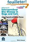 Advances in Intervertebral Disc Disea...