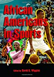 img - for African Americans in Sports book / textbook / text book