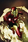 Iron Man Vol. 1: Extremis Image