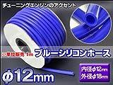 チューニングエンジンのアクセント☆ブルーシリコンホース【φ12mm】※販売単位 1m