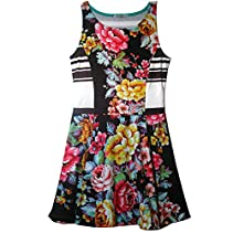 Dirtee Hollywood Floral Stripe Dress