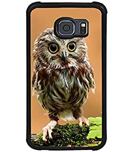 Printvisa Owl On A Tree Branch Back Case Cover for Samsung Galaxy S6 Edge::Samsung Galaxy S6 Edge G925