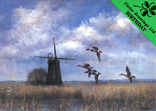happy-birthday-eel-fleet-dyke-potter-heigham-vintage-windmill-birthday-card