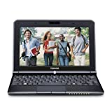 Toshiba Mini 300 Series NB305-N310 10.1-Inch Netbook - Black Onyx