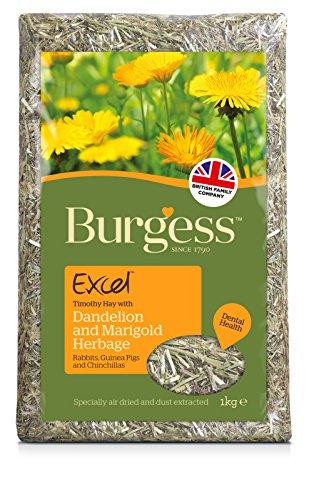 Excel-Herbage-1-kg-Pack-of-3