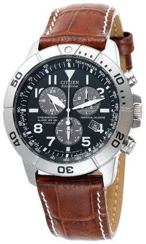 Citizen+Eco-Drive Men's+Perpetual Calendar Watch #BL5250-02L