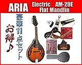 ARIA/アリア AM-20E ピックアップ付きフラットマンドリン お買い得超大盛りセット
