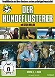 Der Hundeflüsterer - Staffel 4 [5 DVDs]