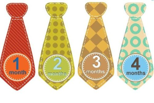 Monthly Baby Stickers Monthly Tie Stickers Boy Necktie Monthly Baby Boy Tie Stickers Uncut Retro Monthly Tie Stickers Boy Brights - Plaid, Stripes, Dots, Argyle,- Oranges, Reds, Yellows, Blues, Brown