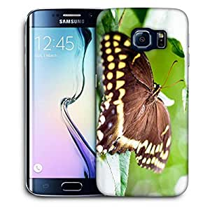 Snoogg Brown Butterfly Printed Protective Phone Back Case Cover For Samsung Galaxy S6 EDGE / S IIIIII