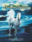 Phantom Stallion: Wild Horse Island #...
