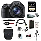 Sony DSC-HX400V/B DSCHX400V HX400V 20.4MP High Zoom Point and Shoot Camera + Sony 32GB SDHC Memory Card + Focus NP-BX1 Battery & Charger + Accessory Kit