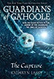 Guardians of GaHoole #1: The Capture: (Movie Cover)