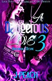 img - for A Dangerous Love 3: Undeniable Desires (Volume 3) book / textbook / text book