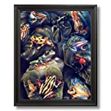 Red Eyed Frog With Frog Collage Wildlife Wall Picture Black Framed Art Print