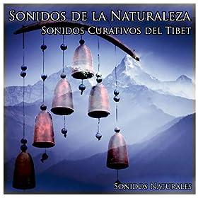 Sonidos de la Naturaleza: Sonidos Curativos del Tibet